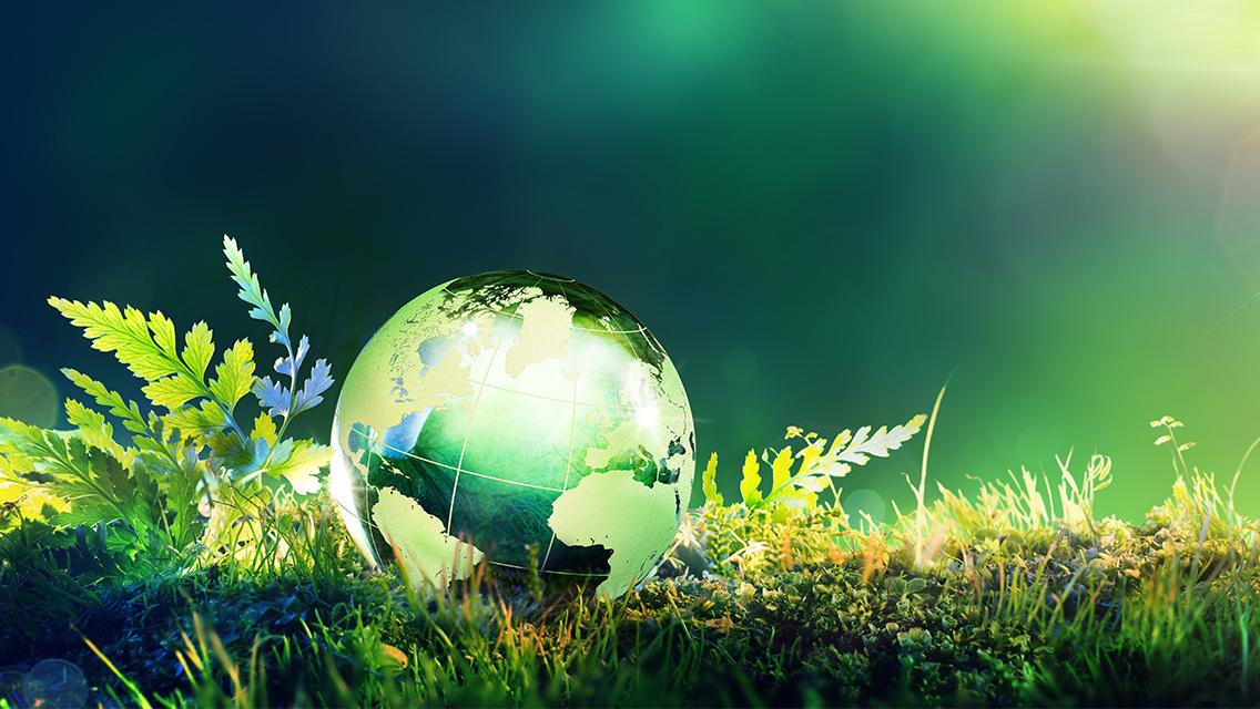Hoellstern is eco-friendly